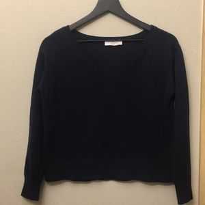Everlane Soft Cotton V-neck Sweater in dark navy